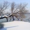 winter_2010-2d9cc594b81bbc0f987cf864f3572310